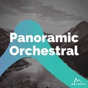 Panoramic orchestral