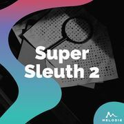 Super sleuth 2
