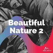 Beautiful nature 2