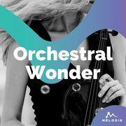 Orchestral wonder