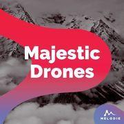 Majestic drones